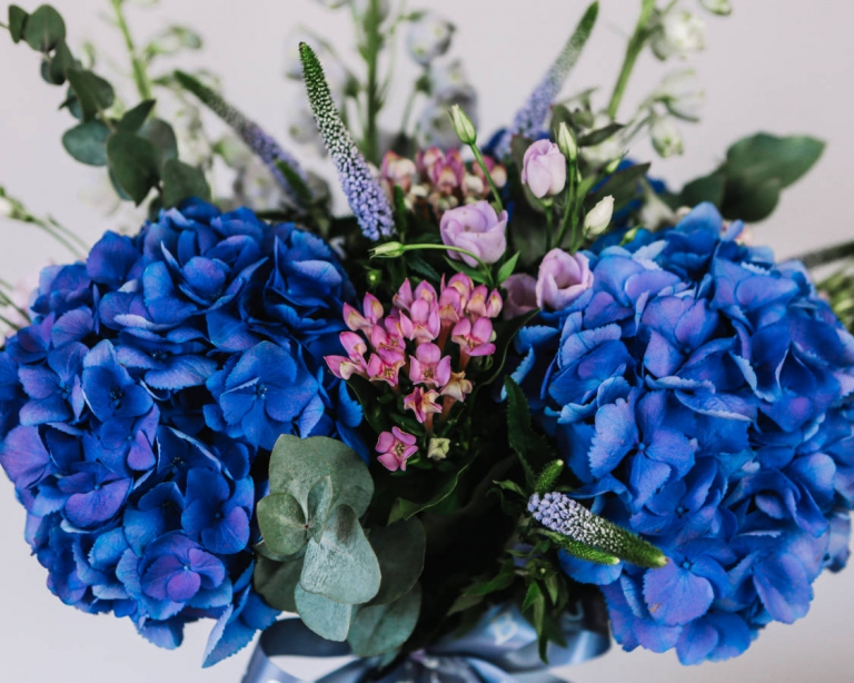 Bluebell and Ivy - Professional Florist, Ulverston - Luna