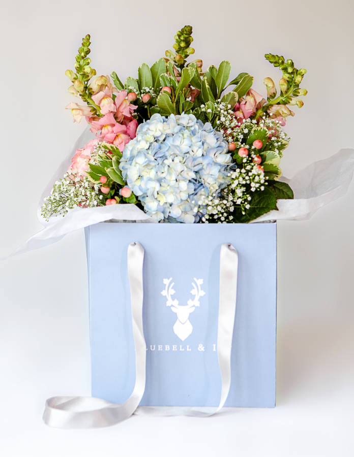 Bluebell and Ivy - Professional Florist, Ulverston - Stephie
